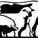 Rhayader Animal Health