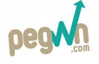 Pegwn Financial Services