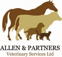 Allen and Partners